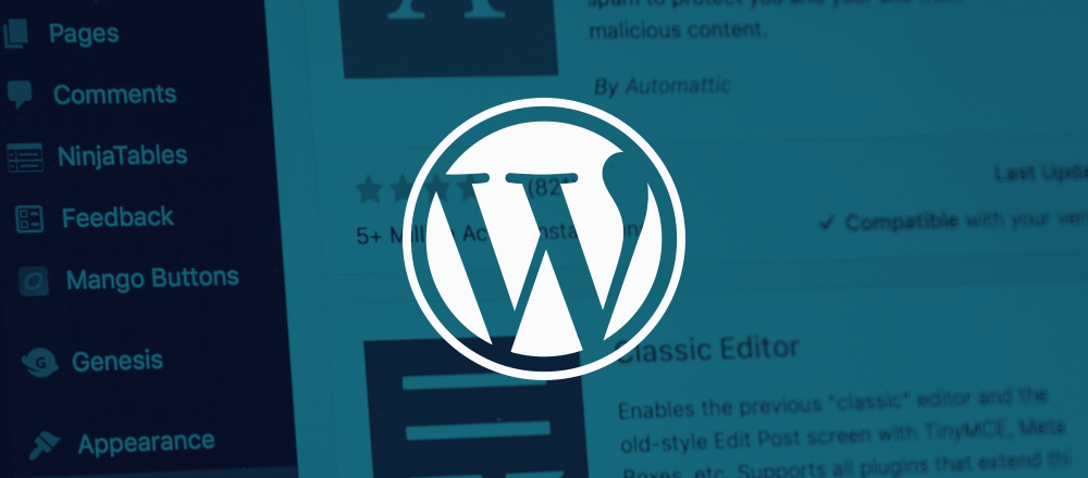 Bug in WordPress plugin